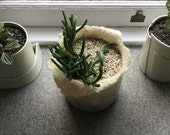 Wool felted bowl for the precious plant NO.3.