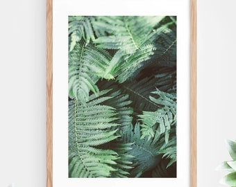Tropical Leaf Fern Printable Wall Art Green Tropical Plant Instant Download Nature Jungle Modern Wall Decor Contemporary Wall Art Printable