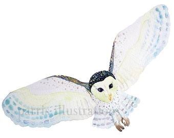 Barn Owl No.3, Archival Print from Original Watercolor, you choose size