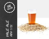 Pale Ale 1 Gallon Beer Recipe Kit