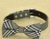 Gray bow tie collar, Bow Tie attached to dog collar, Dog birthday gift, dog lovers, dog collar, Gray dog collar, Wedding accessory