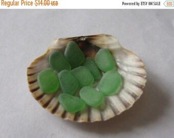 small emerald green kelly green genuine sea glass  beach glass