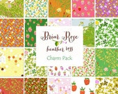 Briar Rose Charm Pack by Heather Ross
