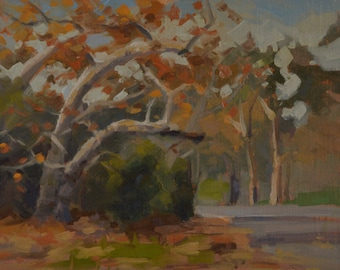 Autumn - Leaves - Trees - Fall - Branches - Plein Air - Original Oil Painting - Landscape  - Woods - Path - California - Impressionism
