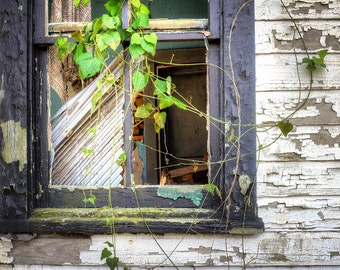 Rustic Window Art, Rustic Home Decor, Abandoned Places, Gone But Not Forgotten, Beautiful Decay, Fine Art Photography, Large Wall Art