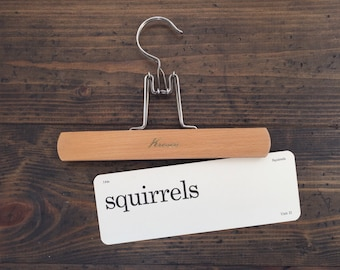 vintage flash card • squirrels | Dick and Jane flashcard