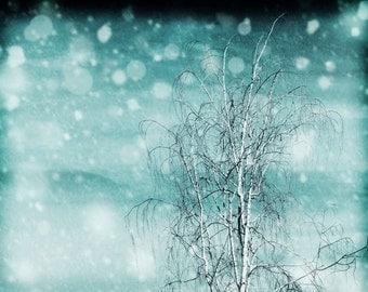 "Snow Photography, SkyPhotography, Art Photography, Surreal, Snowy, Nursery Art, Winter Photography, Fine Art Photography, ""Flurry"""