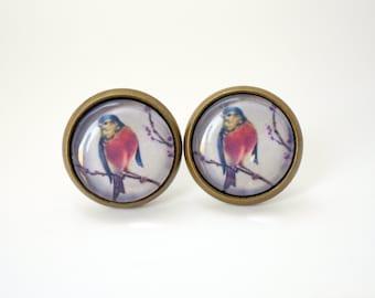 Bird cabochon earring studs