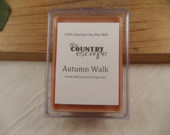 Autumn Walk Scented 100% Soy Wax Melt - Delightful Scent of Fall - Maximum Scented