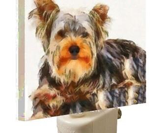 Yorkshire Terrier - Nightlight