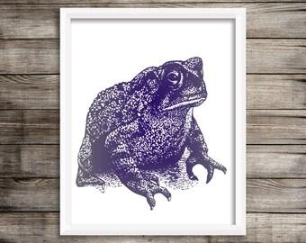 Navy Frog