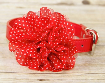 Red w/White Polka Dots & Lace Dog Collar Flower Attachment, (Collar not included), Pet Photographer, Prop, Dog Accessory