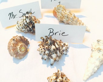 Sea Shell table number place card holder food marker set of six