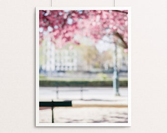 Paris Photography - Springtime in Paris, Dreamy Paris, Paris Decor, Home Decor, Pink, White