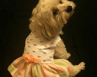 Pink and White Rose-dotted Dog Dress