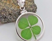 Sterling Silver Pendant with a Real Four Leaf Clover - RSP-4J