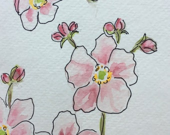 Pink Anemone Watercolor Card