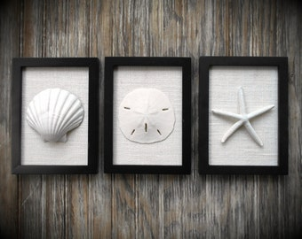 Cottage Chic Set of Beach Decor Wall Art, Coastal Decor, Nautical Decor, Beach Wall Art, Sea Shells Home Decor, Black and White Wall Art