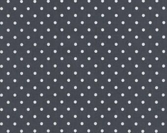 Timeless Treasures Steel Polka Dot, Fabric by the Yard