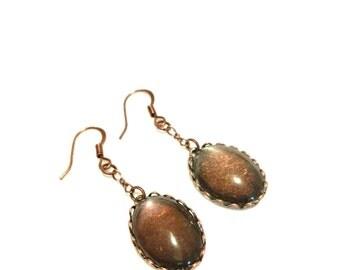 Rich Brown Dangle Earrings