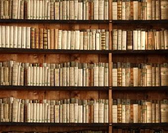 Bookshelf Photography Backdrop,Portrait Vinyl photo Background for Child photoshoot Painted Photo props - Item D1487