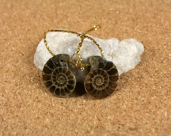 Ammonite Matched Earring Pair - Brown Fossil Seashell Top Drilled, 1 pair