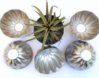 Vintage Jello Molds, Silver Tart Tins, Aluminum Jelly Molds, 12   in Set, Repurposed Tiny Succulent Planters, Place Card Holders