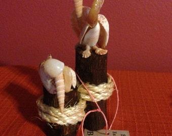 Seashell Pelicans