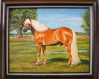 Haflinger Stallion