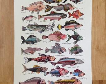 Field Guide of Imaginary Fish art print, original ink and watercolor drawing, playful nature art print