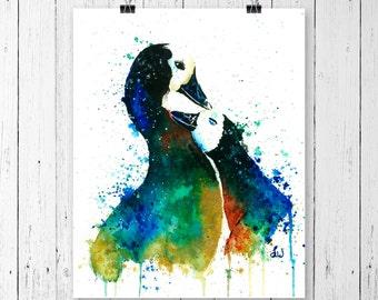 DUCK PRINT, duck print, ducks watercolour, whistling ducks, geese art, geese watercolour, duck painting, whitehouse art, canada goose