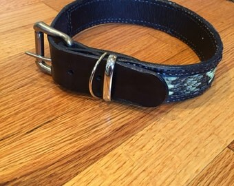 "Rattlesnake dog collar  1 1/2"""