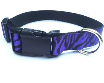 Zebra Striped Dog Collar, Cute Dog Collar, Purple Dog Collar, Girl Dog Collar, Large Dog Collar, female dog collar, dog collars for girl