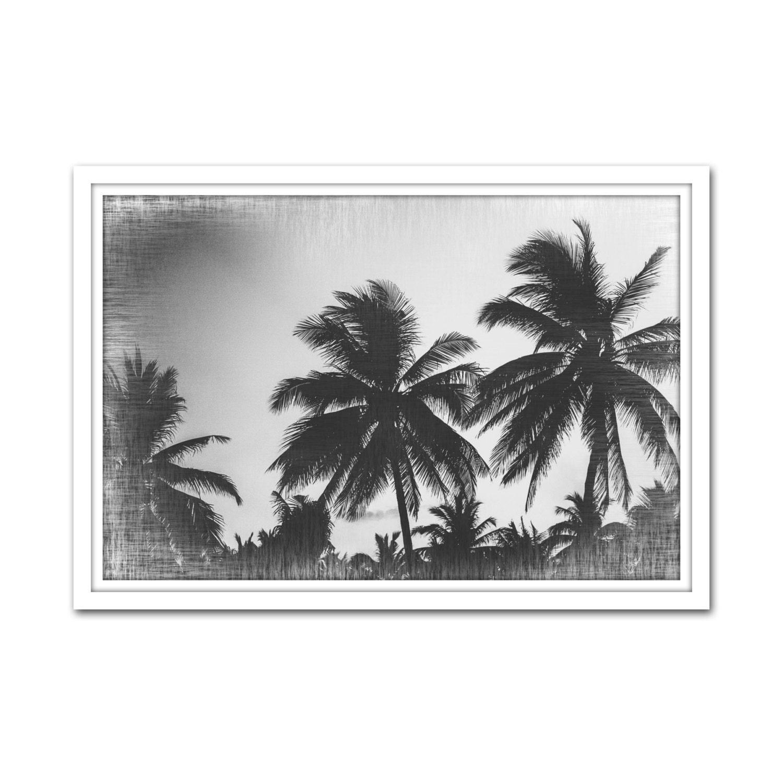 Screen Printing Basics Palm Desert: Black And White Palm Trees Palm Tree Wall Art Digital Black