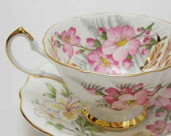 Queen Anne Flower Pink White Orchids Vintage Tea Cup and Saucer Fine Bone China Made in England