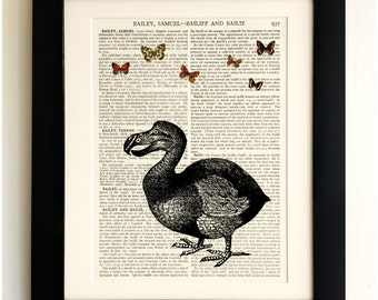 FRAMED ART PRINT on old antique book page - Dodo, Butterflies, Vintage Wall Art Print Encyclopaedia Dictionary Page