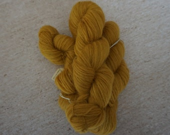 Icelandic pure wool, hand dyed with Rheum rhabarbarum 240915-5.1