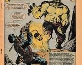 The Incredible Hulk Annua...