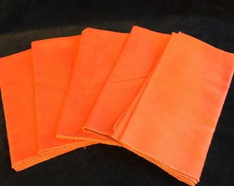 Vintage Burnt Orange Napkin Set of 5 kitsch 70s table linens retro