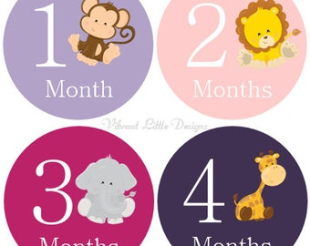 Monthly Baby Stickers Girl, Milestone Stickers, Month Stickers, Baby Month Stickers, Baby Stickers, Jungle Animals  #3