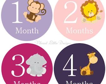 Monthly Baby Stickers Girl, Milestone Stickers, Month Stickers, Baby Month Stickers, Baby Stickers, Jungle Animals  #3