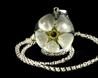 Pendant with natural white flowers of wild apple (Prunus sp.) in the resin sphere on a silver chain. Sphere 3 cm. Chain 80 cm.