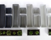 Concrete Succulent Planter Set-- [small], rectangular