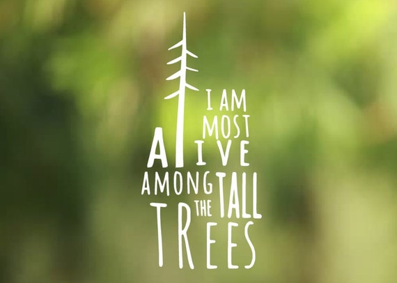 I am Most Alive Among the Tall Trees Vinyl Decal - Car Decal - Car Sticker - Laptop Decal - Laptop Sticker