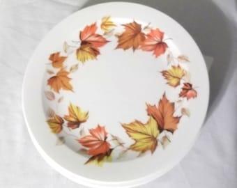 """8 Vintage 60's-70's 10"""" White Melamine plates,Autumn Leaves design"""