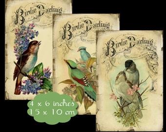 8 Birdie Darling Tags