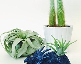 Small Cobalt Blue Metallic Styracosaurus Dinosaur Planter Air Plant; Dinosaur Planter;  Desk Accessory; Home Decor; Planter; Gift; Air Plant