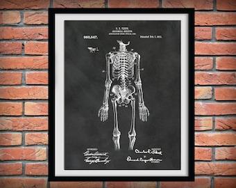 Patent 1911 Anatomical Skeleton - Art Print - Poster - Orthopedic - Medical -  Doctors Office - Nurse - Anatomy Art - Hospital Wall Art