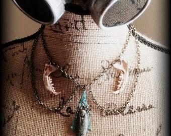 Magicicada, Bone jewelry, Oddities, Teeth, Real bones