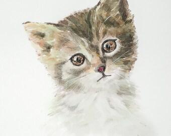 Cute Little Kitten, Fine Art Print on Lustre Photo Paper
